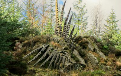 13 Some Fern A Sculpture By Kerry Morrison In Grizedale Forest