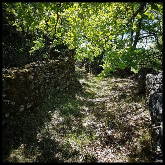 Day 18 The Old Ways In Aragon At Monesma De Benabarre