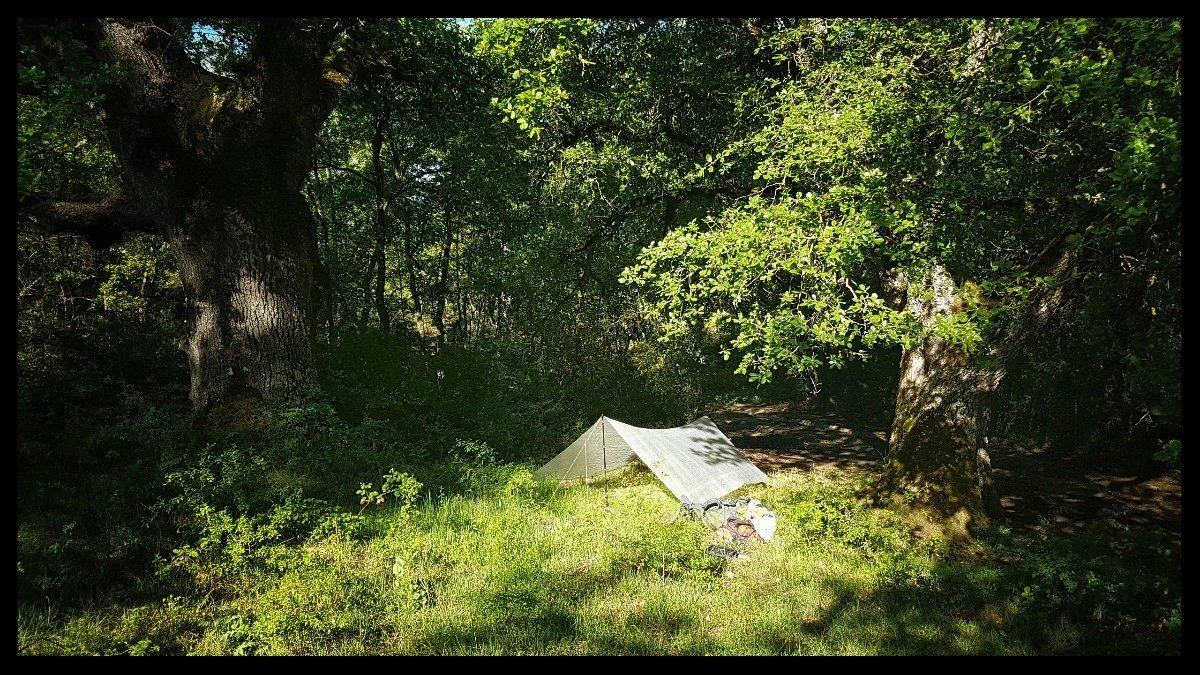 Day 33 Bivouac Near Santa Cruz De Campezo Guarded By Two Mighty Oaks
