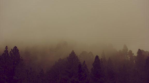 Fog on Tenerife