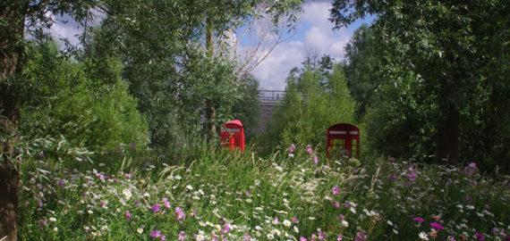 The Wetlands Of Queen Elizabeth Olympic Park
