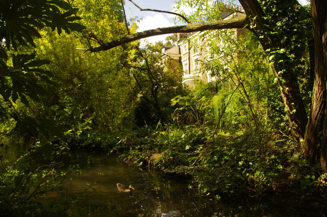 The Reconstructed New River In Canonbury