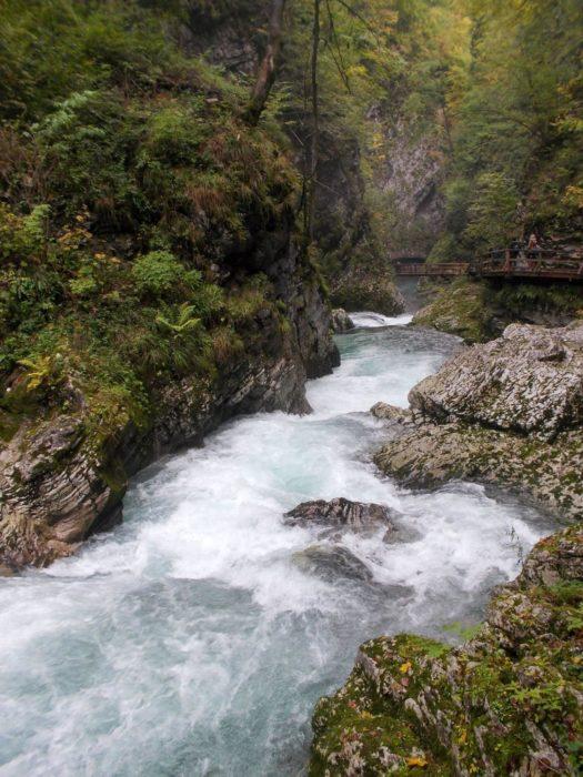 The Radnova Flowing Through The Vintgar Gorge