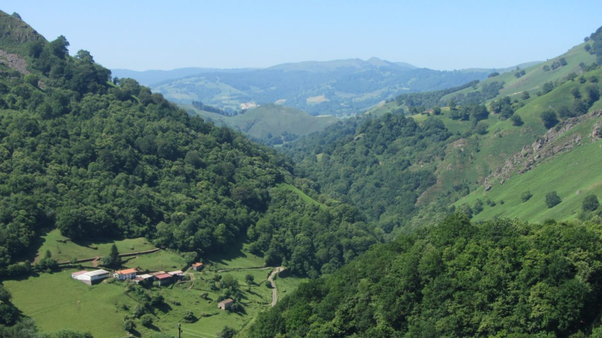 The Pass Above Roncesvalles