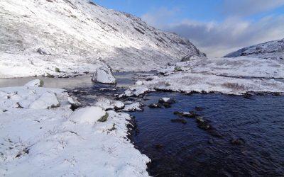 The Lake Of Svarttjonne At The Head Of Dumdalen