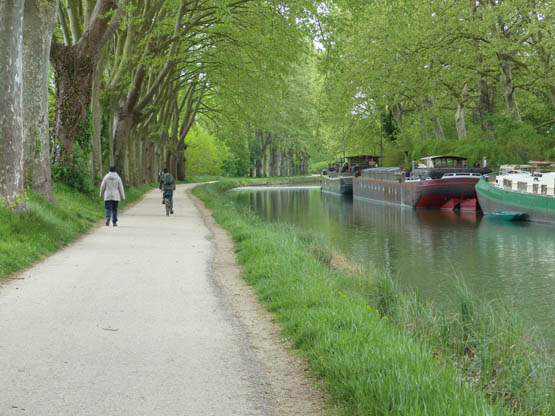 5 great days out along the Canal du Midi cycle route